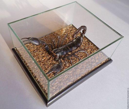 Животные ручной работы. Ярмарка Мастеров - ручная работа. Купить Скорпион Heterometrus laoticus. Handmade. Насекомое, подарок