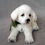 Куклы и игрушки handmade. Livemaster - original item puppy Teddy Labradorcico. Handmade.