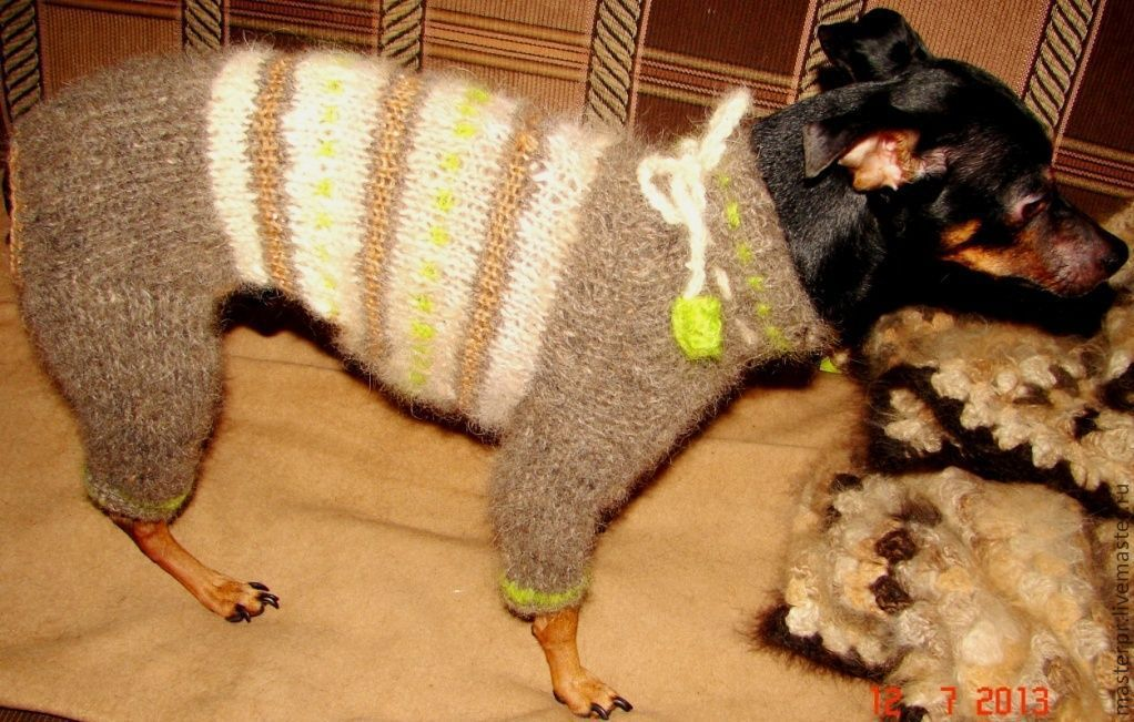 Вязаные комбинезоны для собак из собачьего пуха – купить в ...