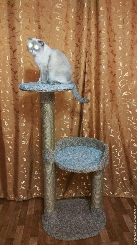 """Аксессуары для кошек, ручной работы. Ярмарка Мастеров - ручная работа. Купить Когтеточка """"Лапушка (мини)"""". Handmade. Коричневый, ручная работа"""