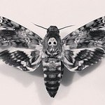 Black_ink_moth (BLACK-Moth) - Ярмарка Мастеров - ручная работа, handmade
