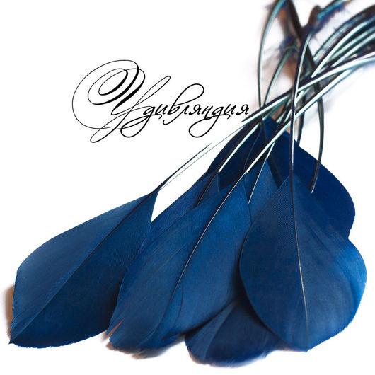 Другие виды рукоделия ручной работы. Ярмарка Мастеров - ручная работа. Купить Перо петуха на ножке натуральное, окрашенное №179.. Handmade.