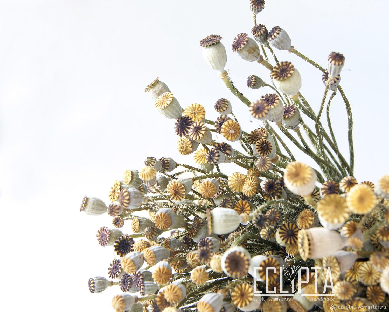 Коробочка мака 8 мм-1,5 см сухоцвет 1 шт для флористики, декора – купить на Ярмарке Мастеров – JHZ60RU | Сухоцветы, Железногорск