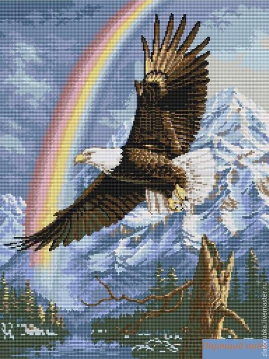 Парящий орёл.