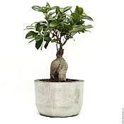 Кашпо ручной работы. Ярмарка Мастеров - ручная работа Горшок из бетона для растений, цветов в стиле лофт. Handmade.