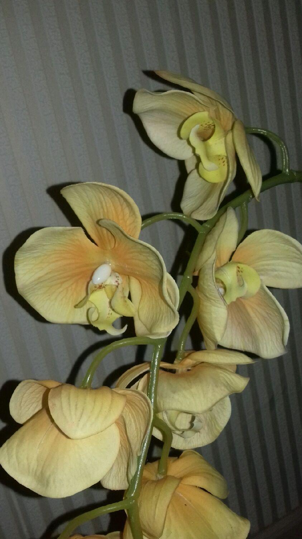 Орхидея -фаленопсис интерьерная композиция (имитация живой орхидеи )