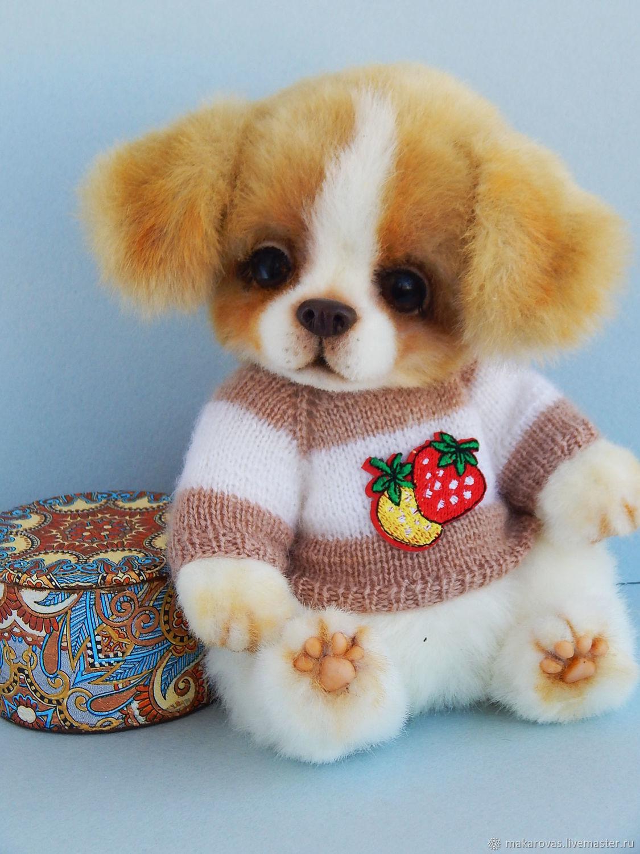 Тимми, щенок тедди, Тедди Зверята, Реж,  Фото №1