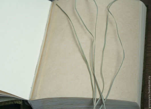 Фотоальбомы ручной работы. Ярмарка Мастеров - ручная работа. Купить Альбом для гербария Лесные и болотные травы (А4, для 40 растений). Handmade.