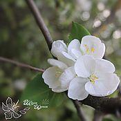 Цветы и флористика ручной работы. Ярмарка Мастеров - ручная работа Брошь из цветов яблони. Handmade.