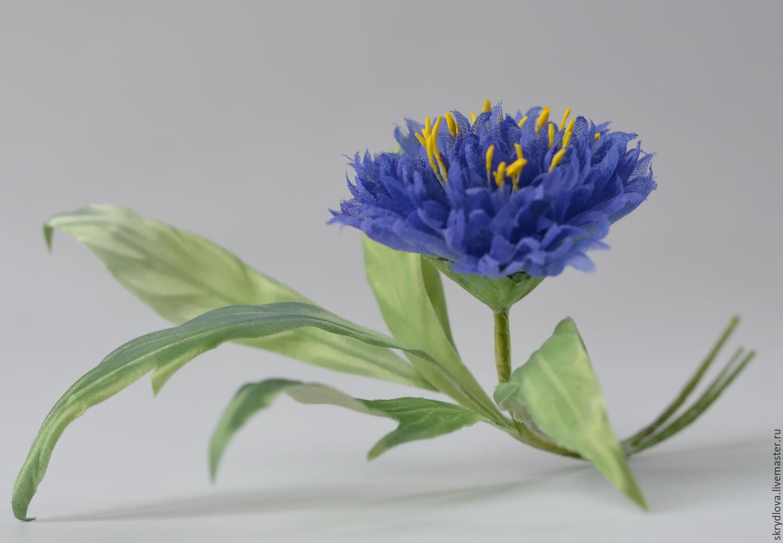 Легенда о васильке - Легенды о цветах - Лепесток 9
