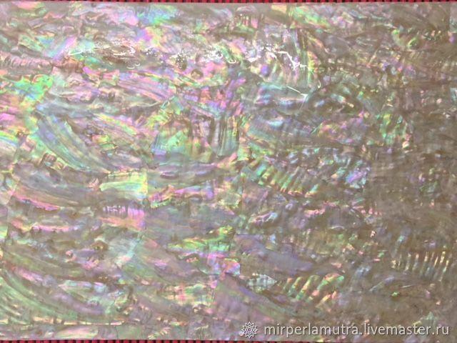 Пластина 019 перламутровая из раковины морское ушко, Ракушки, Обнинск,  Фото №1