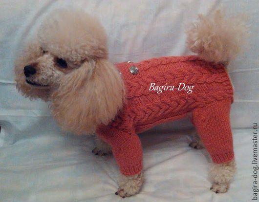 """Одежда для собак, ручной работы. Ярмарка Мастеров - ручная работа. Купить Авторский комбинезон """" Оранжевое чудо """". Handmade."""