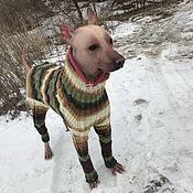 Одежда для питомцев ручной работы. Ярмарка Мастеров - ручная работа Вязаный комбинезон для большой собаки. Handmade.