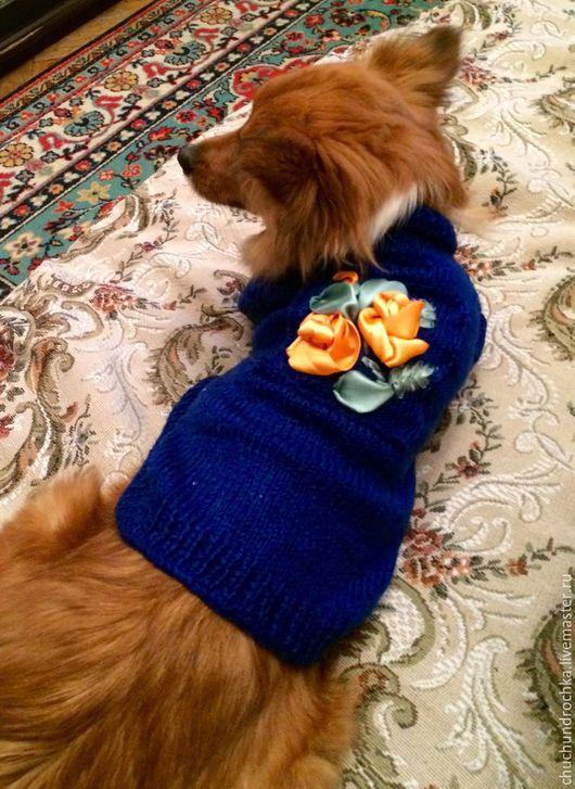 Одежда для собак, ручной работы. Ярмарка Мастеров - ручная работа. Купить Кофта Озеро. Handmade. Тёмно-синий, шпиц