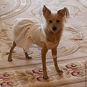 Для домашних животных, handmade. Livemaster - original item Dress for dogs