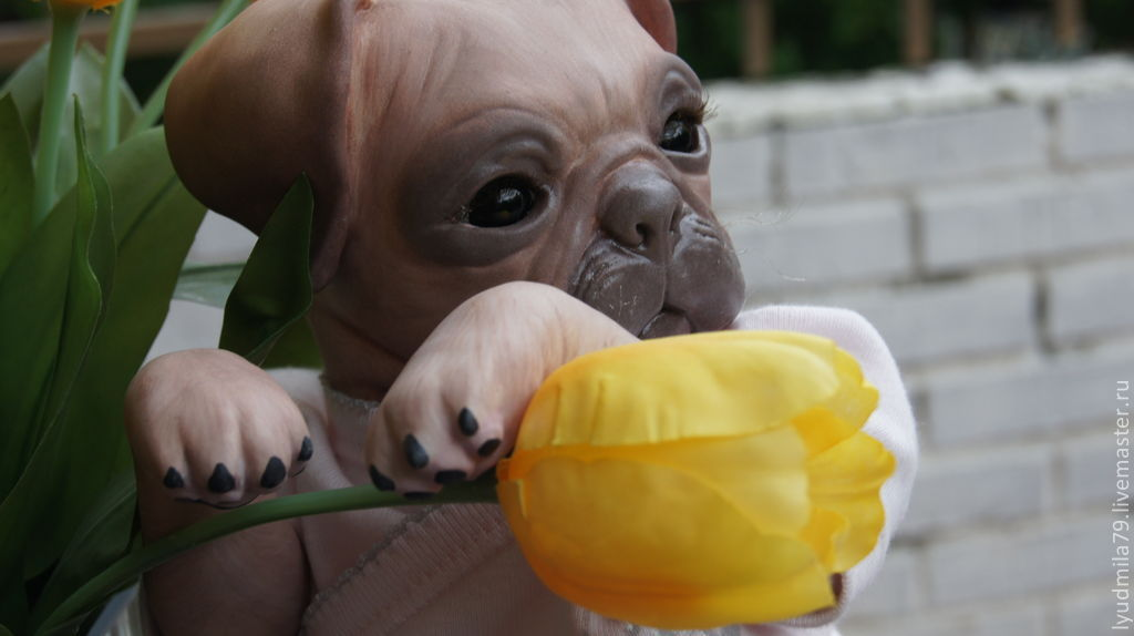 Reborn-the pug Princess 3, Reborn, Moscow,  Фото №1