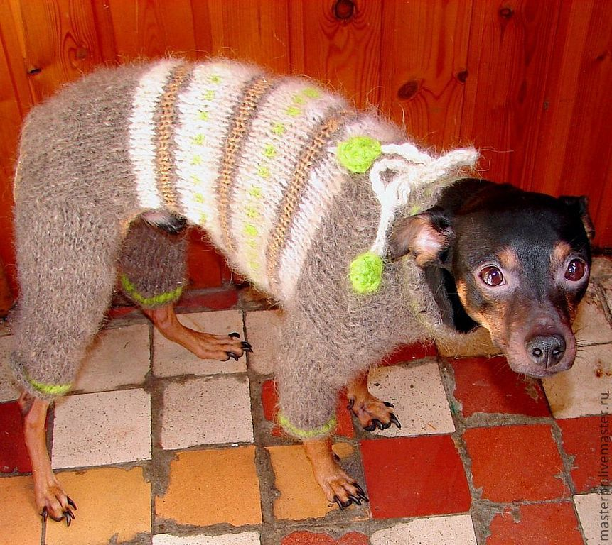 winter knitted romper made out of dog yarn yarn