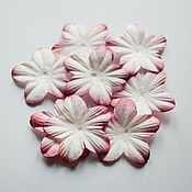 Материалы для творчества ручной работы. Ярмарка Мастеров - ручная работа цветок бумажный 5 лепестков. Handmade.