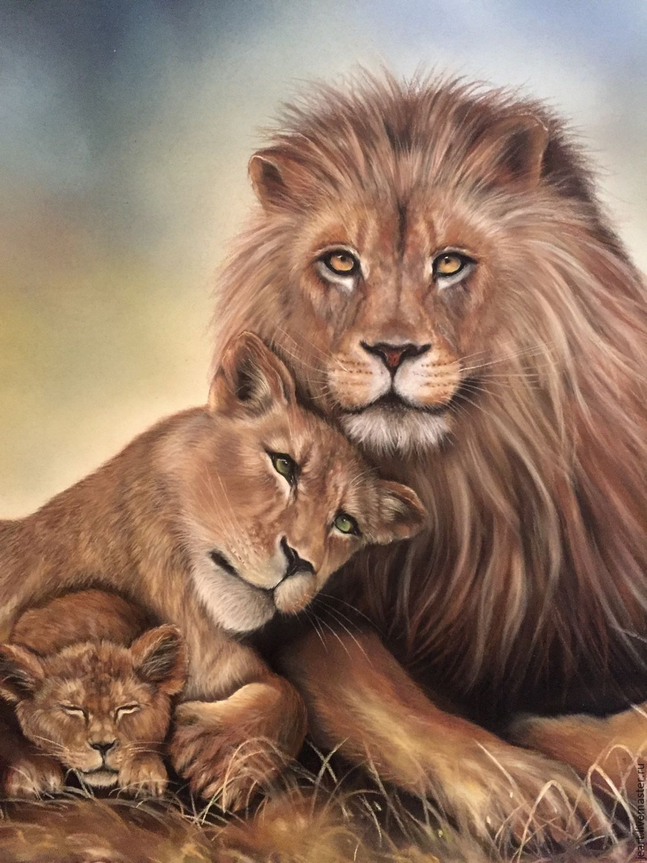 Картинки с львами и львицами на телефон
