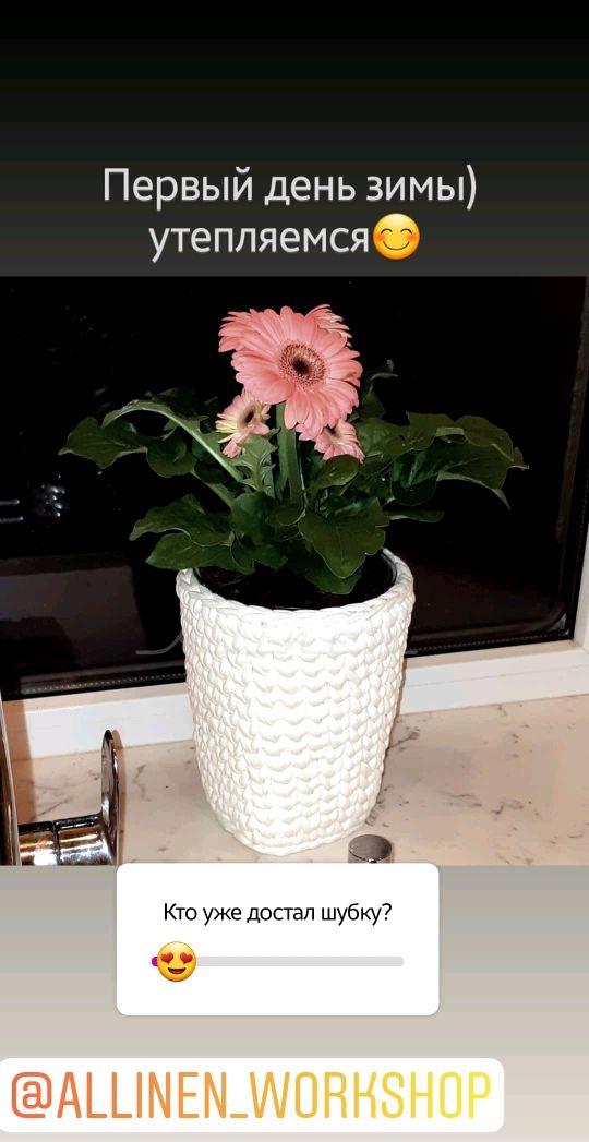 Вязаный горшок для цветов