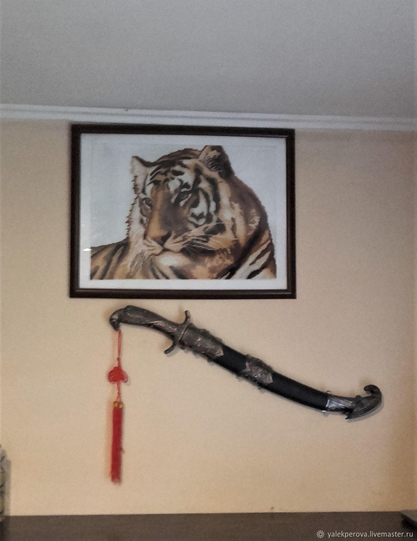 Tiger, Pictures, Krasnodar,  Фото №1