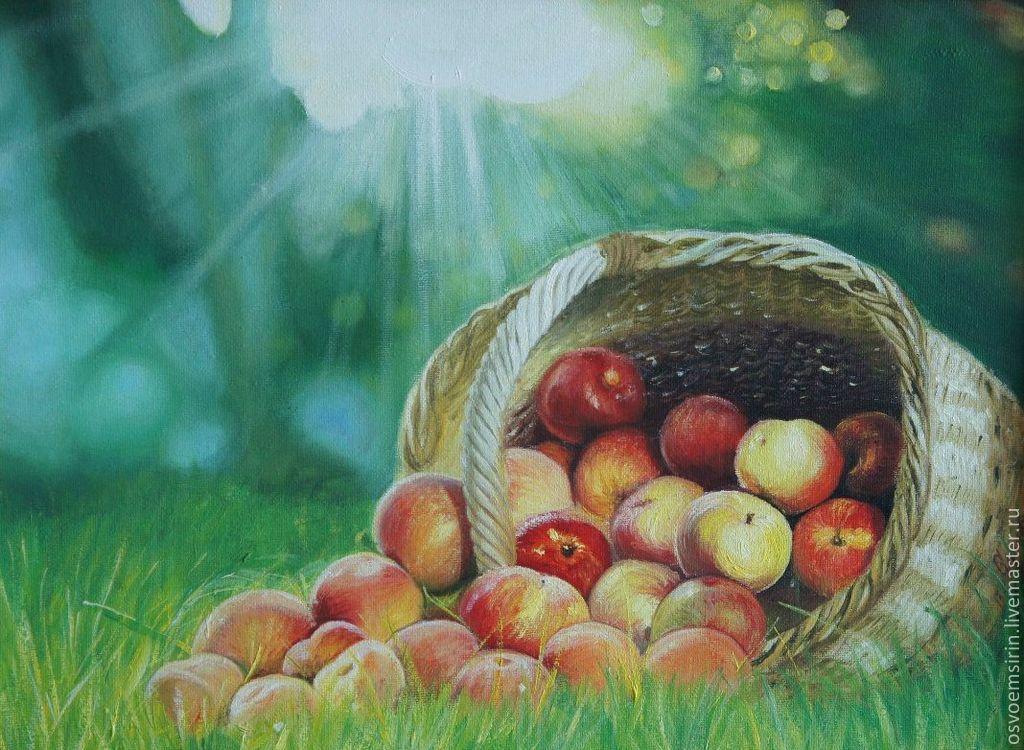 Apples, oil 30h40, Pictures, Novosibirsk,  Фото №1