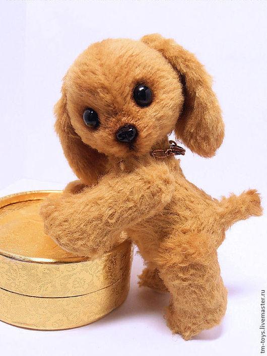 Мишки Тедди ручной работы. Ярмарка Мастеров - ручная работа. Купить Щенок Чипси. Handmade. Бежевый, забавный, оригинальный подарок