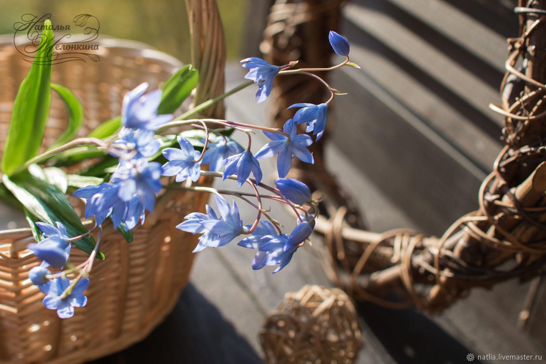 Цветы из холодного фарфора. Пролески, Цветы, Новокузнецк,  Фото №1