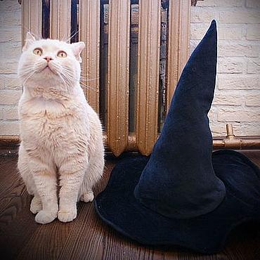 Аксессуары ручной работы. Ярмарка Мастеров - ручная работа Ведьмина шляпа, карнавальная. Handmade.