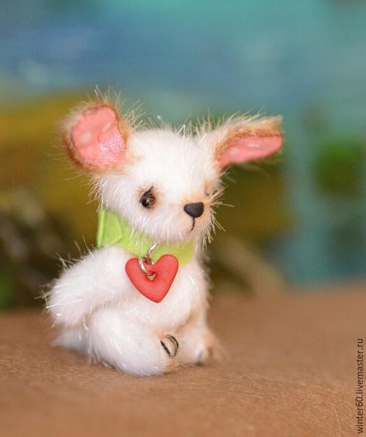 Мишки Тедди ручной работы. Ярмарка Мастеров - ручная работа. Купить Собачка Белочка. Handmade. Белый, подарок