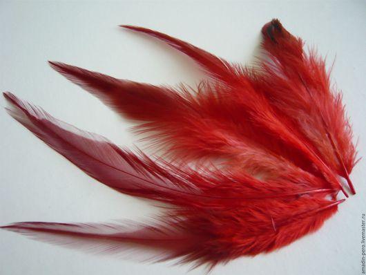 Другие виды рукоделия ручной работы. Ярмарка Мастеров - ручная работа. Купить Перо петуха красное двухцветное 10-15см 20шт. Handmade.