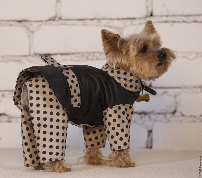Как из рукава сделать одежду для собаки