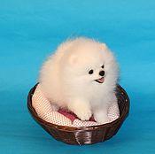 Куклы и игрушки handmade. Livemaster - original item White puppy Spitz. Handmade.