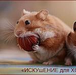 """"""" ИскУшениЕ для ХомоЧкИ"""" - Ярмарка Мастеров - ручная работа, handmade"""