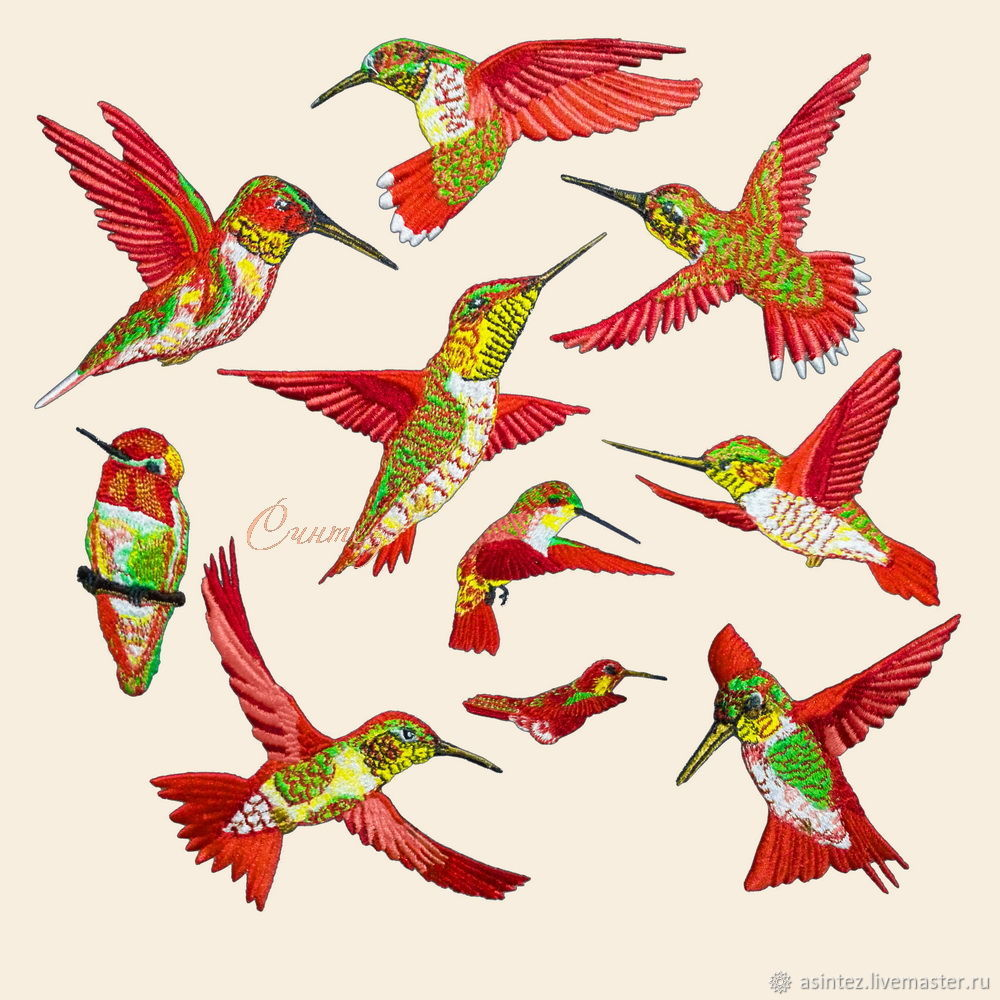Applique embroidery patch birds Hummingbird red . stripe on clothes, Applications, Moscow,  Фото №1