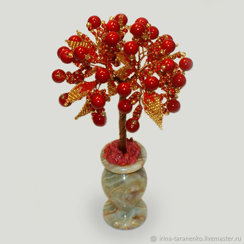 Coral tree ' coral charm', Trees, Moscow,  Фото №1