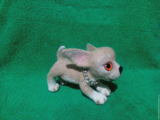 Игрушки животные, ручной работы. Ярмарка Мастеров - ручная работа. Купить Щенок (игрушка) породы Чихуахуа. Handmade. Бежевый, сувенир