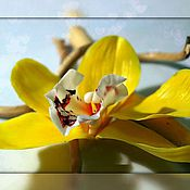 Украшения ручной работы. Ярмарка Мастеров - ручная работа Крупная заколка с желтым цимбидиумом, керамическая флористика. Handmade.