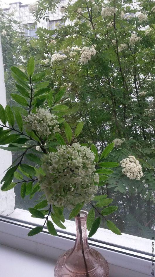 Искусственные растения ручной работы. Ярмарка Мастеров - ручная работа. Купить ветка цветущей рябины из холодного фарфора. Handmade. Фарфор
