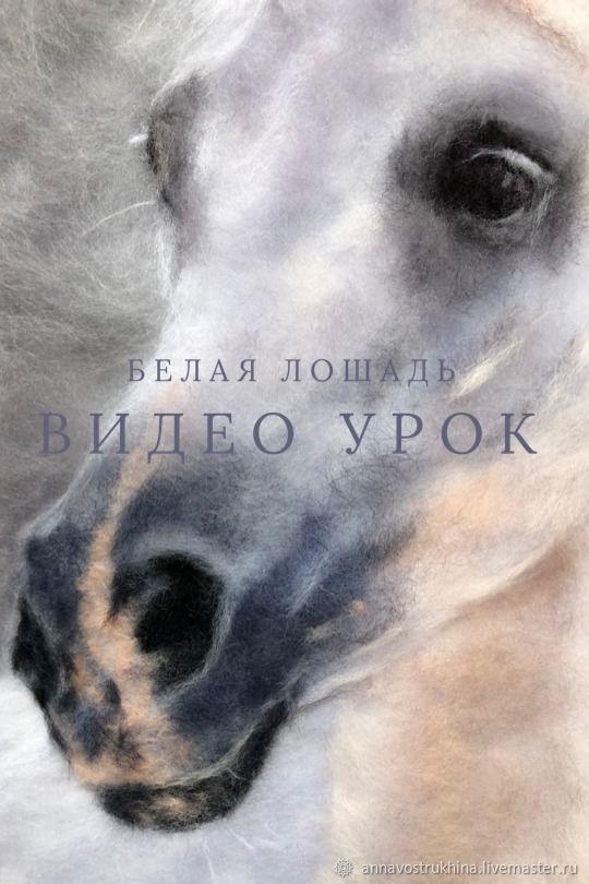 Видео урок «Белая лошадь», Войлок, Ижевск,  Фото №1