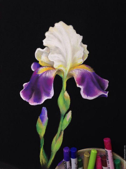 Картина пастелью Ирис Куртина цветов Купить картину