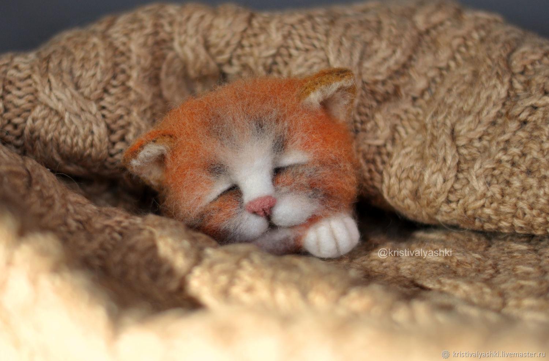 Валяная брошь спящий котик, Брошь-булавка, Архангельск,  Фото №1