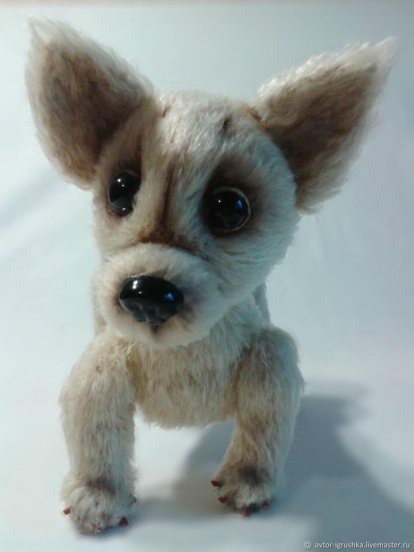 Dog Whiskers, Toys, Nevinnomyssk,  Фото №1