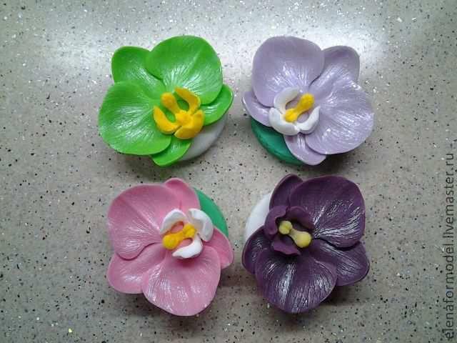 Школа ремонта мастер класс орхидеи для начинающих #3