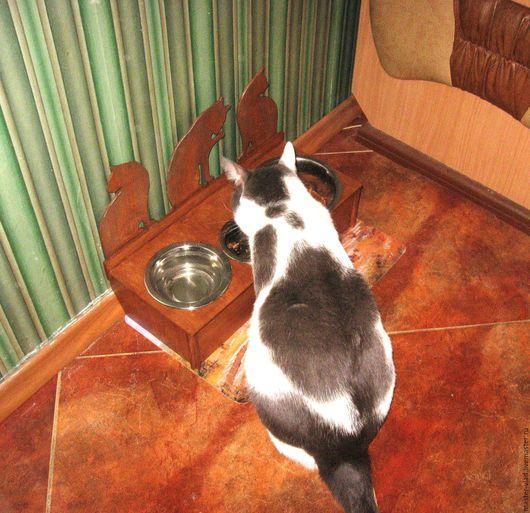 Аксессуары для кошек, ручной работы. Ярмарка Мастеров - ручная работа. Купить Кормушка для животных. Handmade. Коричневый, для интерьера, для собак