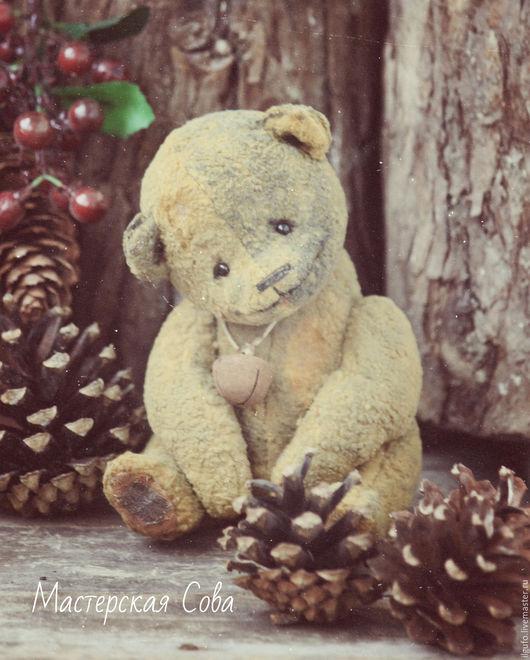 Мишки Тедди ручной работы. Ярмарка Мастеров - ручная работа. Купить Захар. авторский мишка тедди ручной работы. Handmade.