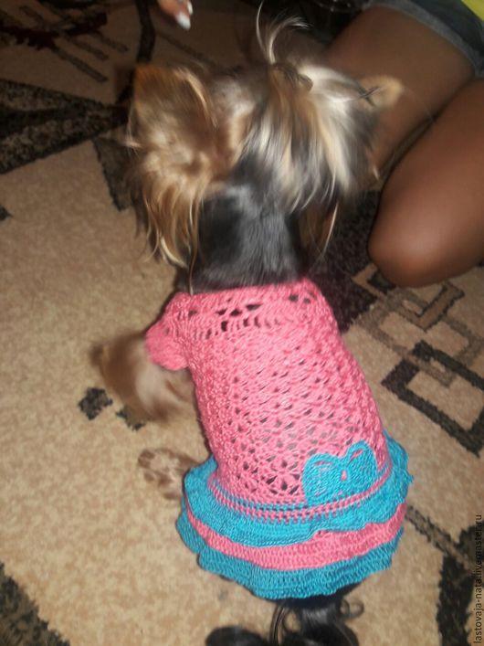 Одежда для собак, ручной работы. Ярмарка Мастеров - ручная работа. Купить Платье для собачки. Handmade. Розовый, Вязание крючком, на праздник