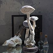 Figurines handmade. Livemaster - original item Catathelasma Imperiale. Interior mushroom. Handmade.