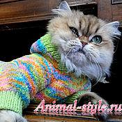 Для домашних животных, handmade. Livemaster - original item Plush suit