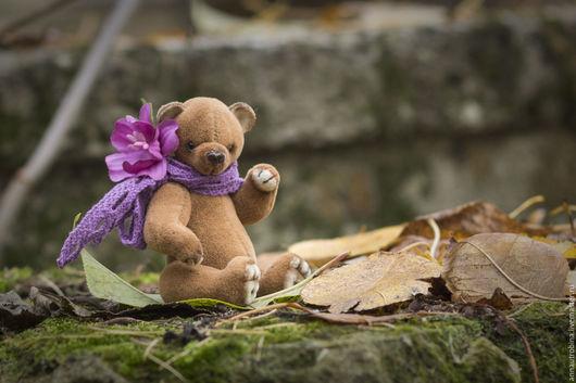 осень, времена года, осенний мишка тедди, осеннее настроение, золотая осень, мишки тедди, мини мишка, мини мишка Тедди, миник тедди, тедди мишка, осенний мишка, Маленький мишка, миниатюрный мишка, мин